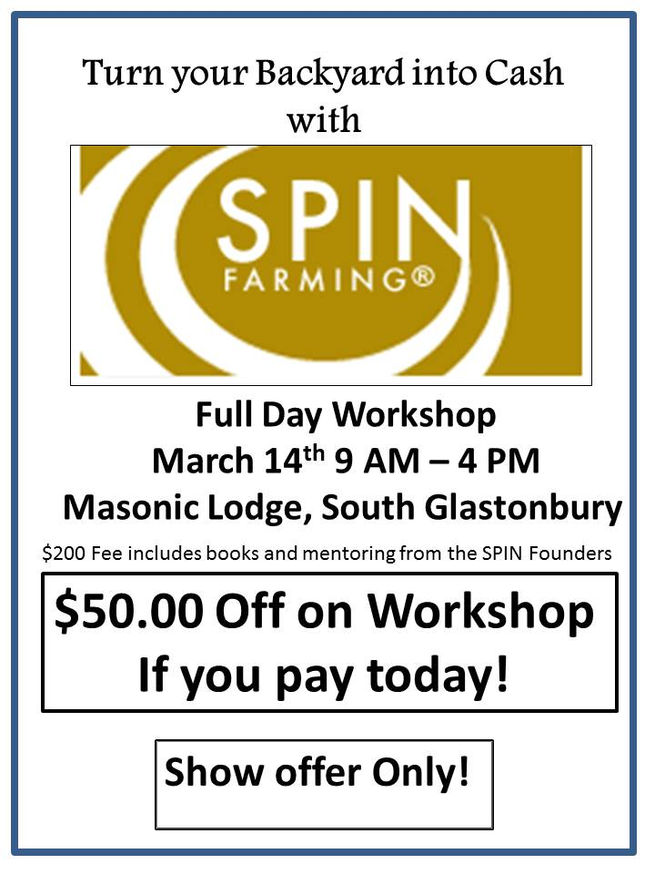 SPIN Workshop Flyer