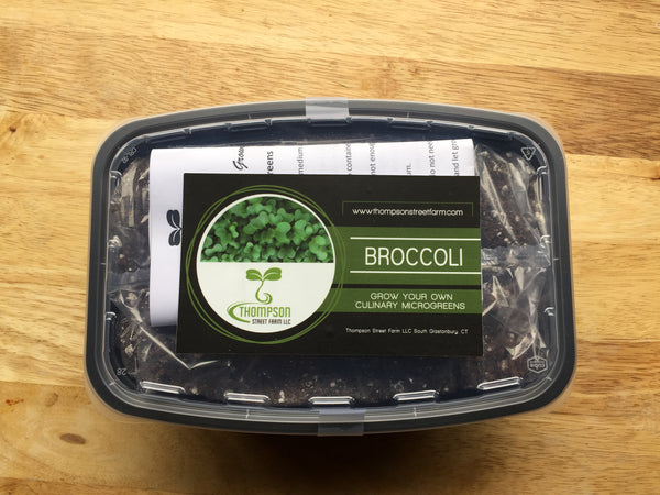 Culinary Microgreen Grow Kit - Broccoli - Thompson Street Farm LLC, microgreens,