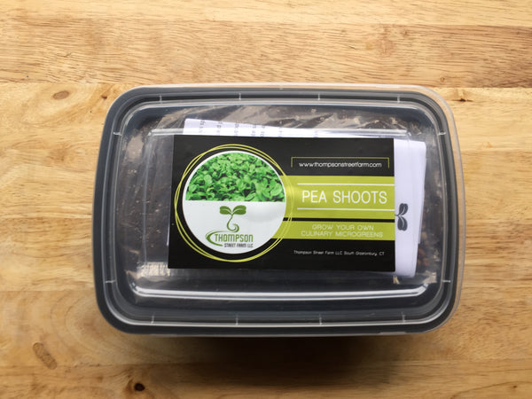 Culinary Microgreen Grow Kit - Pea Shoots