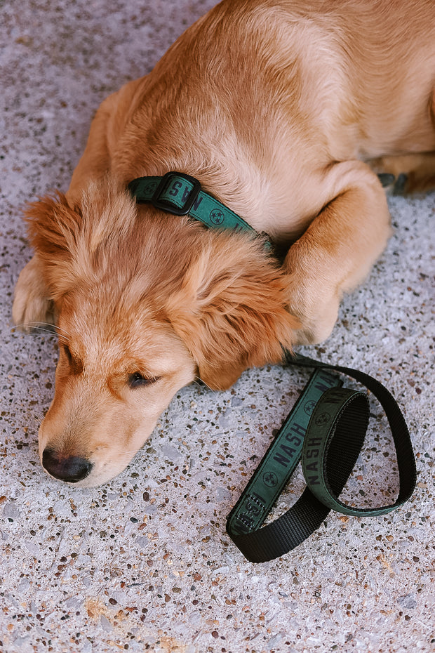 NASH Dog Collar [Olive/Black]