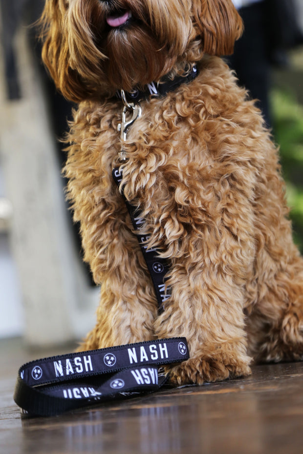 NASH Dog Leash [Black/White]