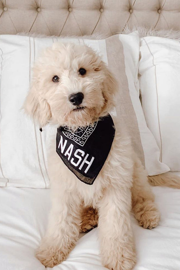 Black/White NASH Bandana