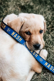 NASH Dog Leash [Navy/Gold]