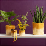Aveva Design Large Ombré Mustard Plant Pot - Pomegranate Living