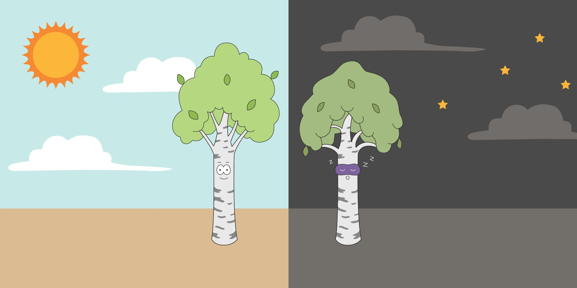 Illustration of trees at night and during the day