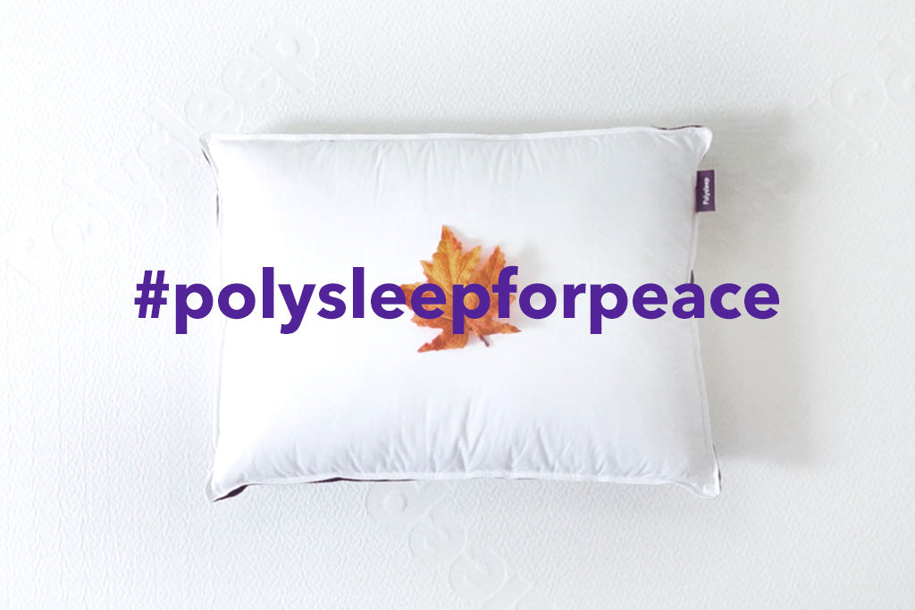 Polysleep x VETS Canada Collecte de Fonds