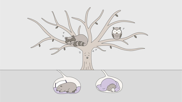 Illustration of forest animals sleeping on top of or under a tree