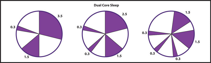 Dual Core Sleep