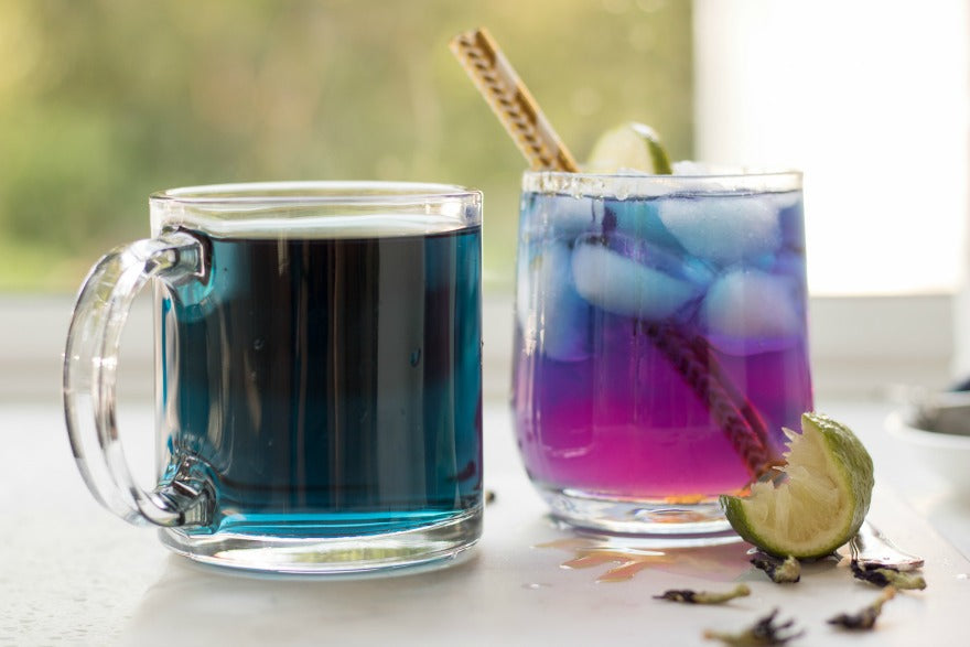 Blue Butterfly Pea Flower Tea horizontal