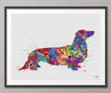 Dachshund Long Hair Watercolor Print Dog Lovers Gift Dog Teckel Doxie Art Print Nursery Wall Art Wall Decor Art Home Decor Wall Hanging-1224 - CocoMilla