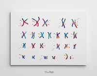 Male Chromosome Down Syndrome Watercolor Print Karyotype 21st Chromosome Medical Art Decor Wall Art Nurse Gift Laboratory Science Genetic-73 - CocoMilla