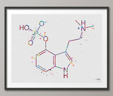 Psilocybin Molecule Watercolor Print Chemical Molecule Magic Mushroom Nerd Art Science Biology Medical Art Chemistry Science Art Decor-304 - CocoMilla