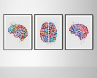 Atlas of the Brain Watercolor Print Set Human Brain Anatomy Medical Art Neurology Doctor Psychology Neuroscience Clinic Office Wall Decor-61 - CocoMilla