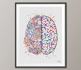 Brain Anatomy Robotic Engine Watercolor Print Science Art Computer Neurology Human Brain Engineer Gift Brain Science Poster Wall Art-1670 - CocoMilla
