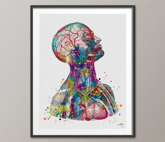 Anatomical Torso Watercolor Print Cardiology Decor Medical Art Print Human Anatomy Art Print Laboratory Decor Doctor Print Wall Hanging-1076 - CocoMilla