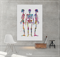 Human Skeletons Watercolor Print Human Anatomy Wall Art Poster Scicence Poster Medical Art Poster Office Decor Medical Student Gift-1241 - CocoMilla