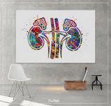 Adrenal Gland Art Watercolor Print Kidney Anatomy Medical Art Science Office Wall Art Endocrinology Art Endocrinologist Doctor Clinic-1325 - CocoMilla