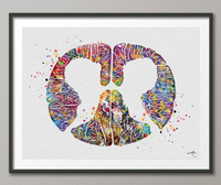 Lumbar Spinal Cord Cross Section Watercolor Print Medical Art Neurology Neurosurgeon Art Neurologist Wall Hanging Doctor Office Decor-1233 - CocoMilla