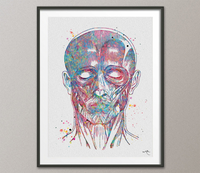 Human Face Muscles Watercolor Print Human Anatomy Medical Art Science Art Facial Surgery Nurse Art Skeleton Print Clinic Office Decor-824 - CocoMilla