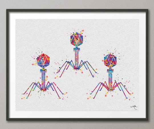 Bacteriophage Virus Watercolor Print Medical Art Biotech Wall Art Bioscience Microbiology Bacteria Art Biology Microscopy Science Decor-196 - CocoMilla