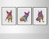 French Bulldog Watercolor Print Set Frenchie art print Bouledogue Francais Art Gift Pet Dog Love Friend Animal Doglover Poster Dog Art-1556 - CocoMilla