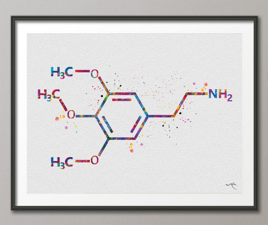 Mescaline Molecule Watercolor Print Chemical Molecule Wall Art Nerd Science Art Biology Medical Art Chemistry Laboratory Medical Clinic-1647 - CocoMilla