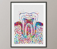 Molar Tooth Watercolor Print Tooth Anatomical Art Dental Clinic Decor Art Dentistry Student Science Graduaiton Dentist Gift Doctor Art-1035 - CocoMilla