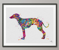 Whippet Dog Watercolor Print Whippet Greyhound Painting Greyhound Whippet Gift Dog Lover Animal Print Dog Poster Greyhound Art Dog Art-425 - CocoMilla