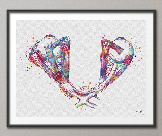 Optic Chiasm and Eye Muscles Watercolor Print Human Eye Optometrist Optician Doctor Art Medical Art Ophthalmology Clinic Office Wall Art-933 - CocoMilla