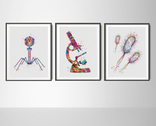 Microbiology Set of 3 Watercolor Print Microbiologist Bacteriophage Virus Microscope Student Student Graduation Laboratory Back to School-78 - CocoMilla