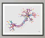 Nerve Cell Watercolor Print Science Poster Neurology Art Nerve Cell Medical Art Brain Graduation Gift Neuroscience Clinic Decor Gift-1036 - CocoMilla