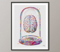 Brain Anatomy in Glass Dome Watercolor Print Medical Art Science Art Anatomy Art Neurology Human Brain Doctor Gift Collectible Gift-156 - CocoMilla