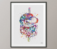 Digestive Tract Watercolor Print Human Organs Gastrointestinal Tract Clinic Decor Art Student Graduaiton Gift Medical Doctor Art Gift-1258 - CocoMilla