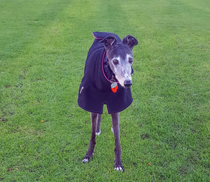 greyhound-chi-chi-double-fleece-coat