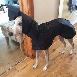 Greyhound Shower Mac with Hood
