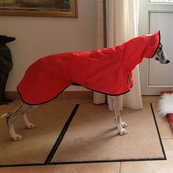 whippet-shower-mac-with-hood