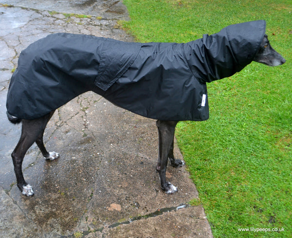Greyhound Shower Mac with Hood -  - 4