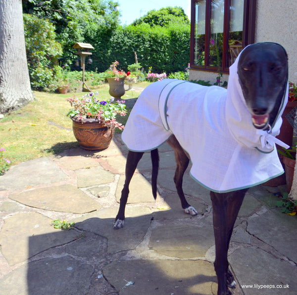Greyhound Summer Cool Coat -  - 2