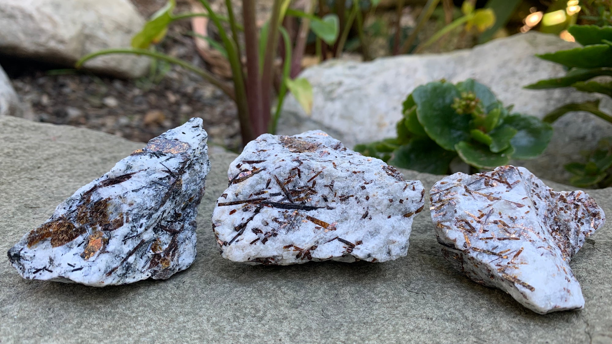 Astrophyllite Raw Crystal Metaphysical Blog -Natural Healing Gemstone - Stone of Motivation Self Growth Positivity Marriage
