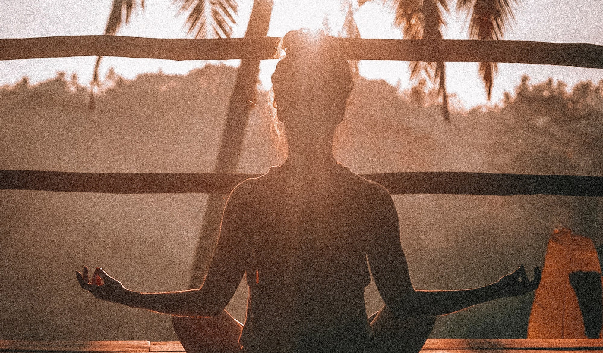 Meditation Apps: Headspace vs Simple Habit