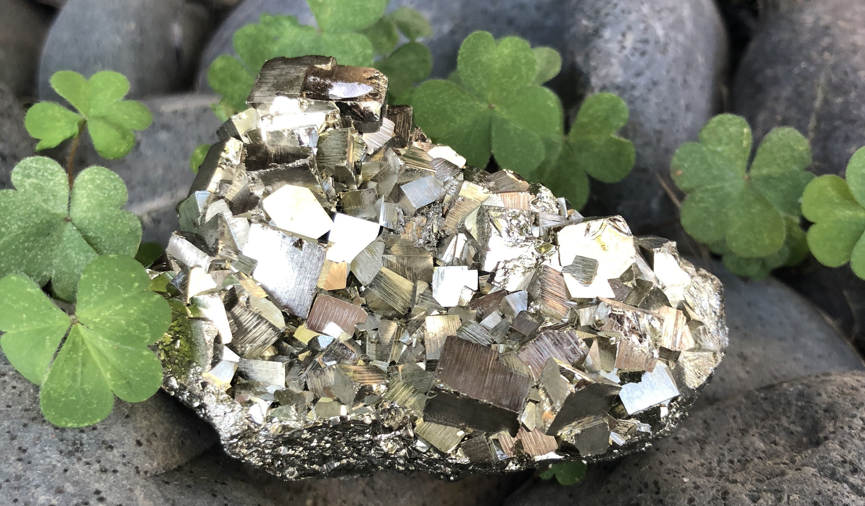 Intro to Wellness: Pyrite