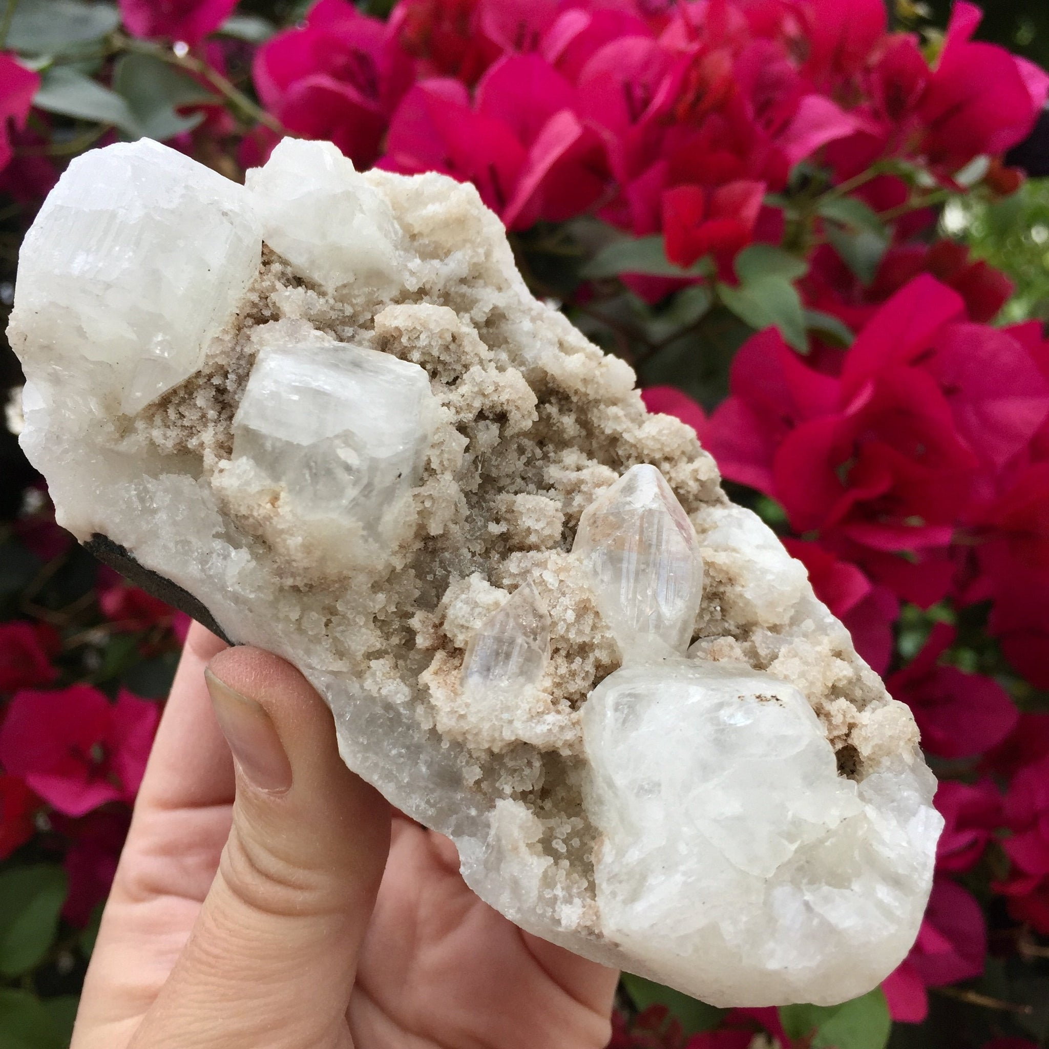 Apophyllite Cluster - Sparkle Rock Pop
