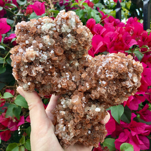 Aragonite Star Giant Cluster - Sparkle Rock Pop