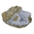 Blue Lace Agate (Chalcedony) - Crystals for Positivity - Sparkle Rock Pop