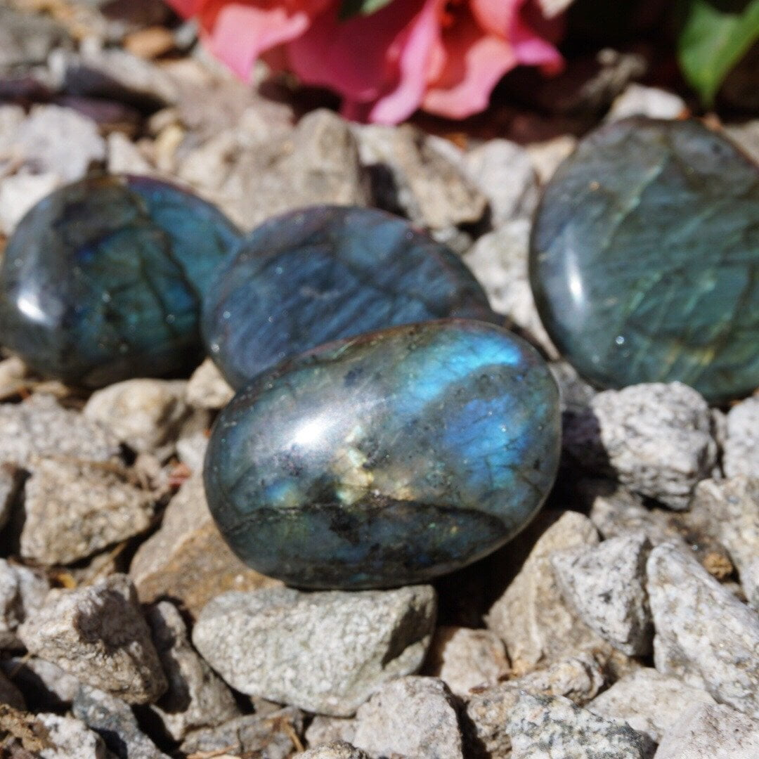 Labradorite Tumble Stone - Sparkle Rock Pop