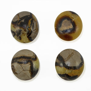 Septarian Dragon Stone - Sparkle Rock Pop
