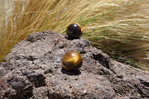 Mini Tiger Eye Sphere - Sparkle Rock Pop
