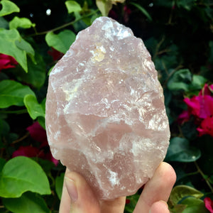 Raw Rose Quartz (12 oz) - Sparkle Rock Pop