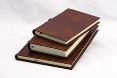 Classic Leather Journal With Unlined Pages