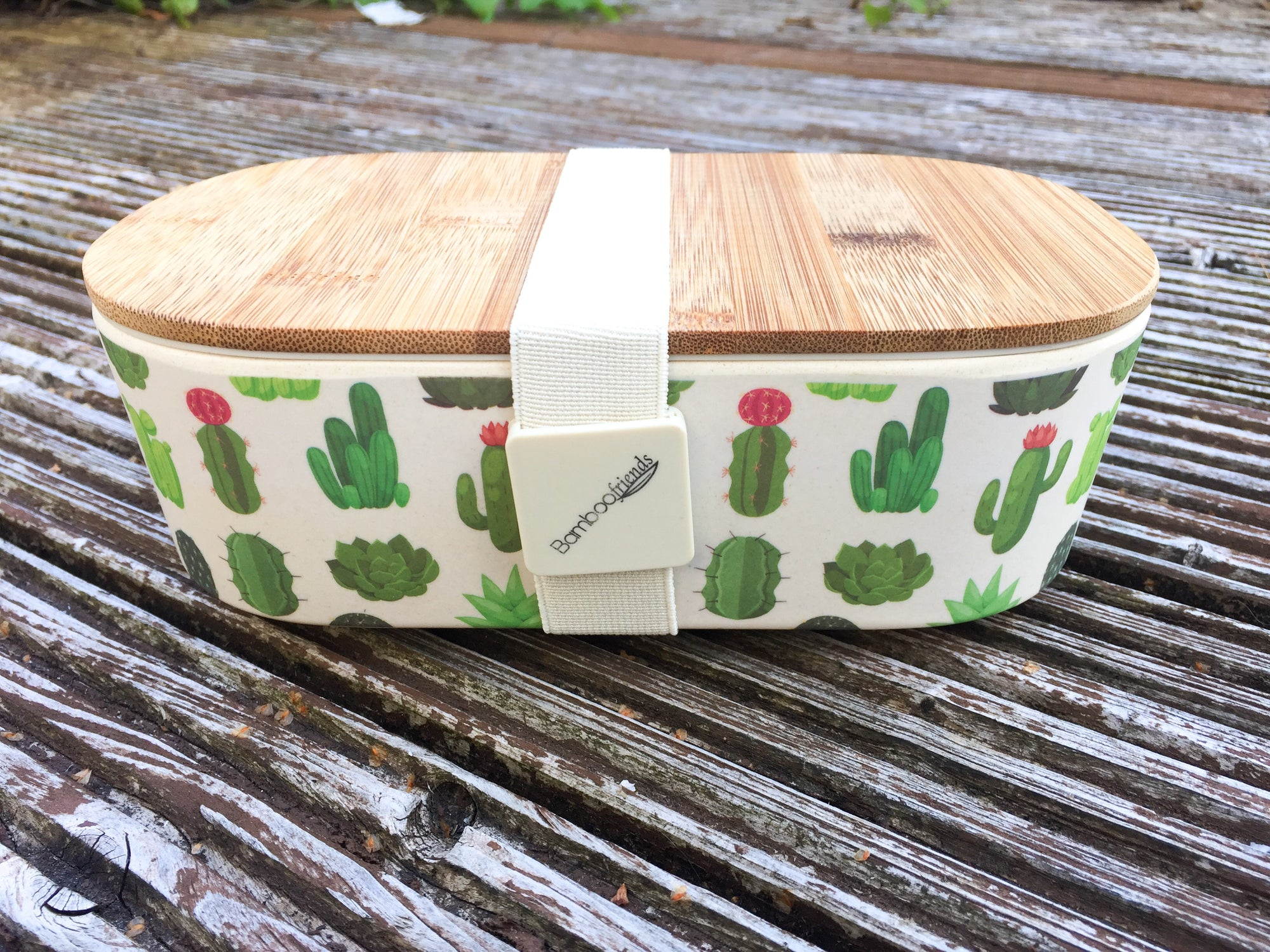 Bamboo Lunch Box - Cacti | Lunch Box - The Naughty Shrew